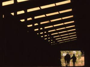 Silhouette of a Woman with Her Horse Walking Out of Barn by Kate Thompson