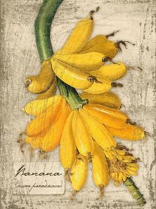Banana by Kate Ward Thacker
