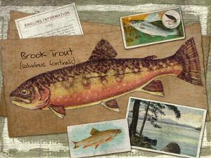 Brook Trout by Kate Ward Thacker