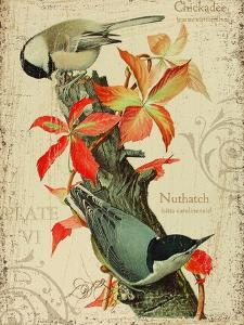 Chicadee by Kate Ward Thacker