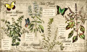 Herbs by Kate Ward Thacker