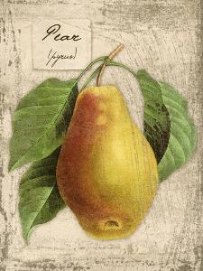 Pear by Kate Ward Thacker