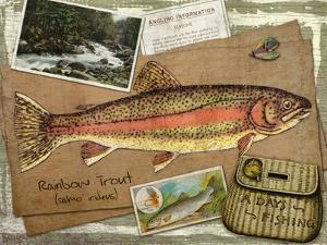 Rainbow Trout by Kate Ward Thacker