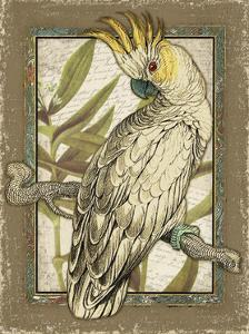 Tropical Bird Composition I by Kate Ward Thacker