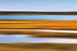 Autumn Marsh by Katherine Gendreau