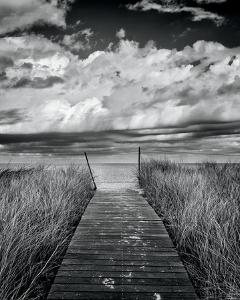 Oak Bluffs Beach Path by Katherine Gendreau