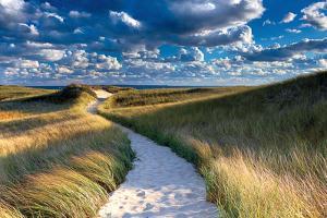 Philbin Beach Path by Katherine Gendreau