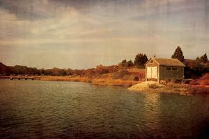 Quitsa Fishing Shack by Katherine Gendreau
