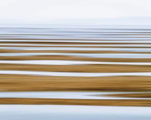 Sand Flats in Fog by Katherine Gendreau