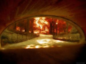 Central Park, no. 1 by Katherine Sanderson