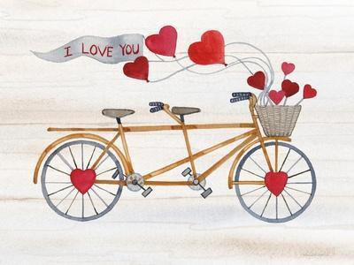 Rustic Valentine Bicycle