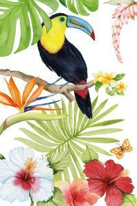 Treasures of the Tropics I by Kathleen Parr McKenna