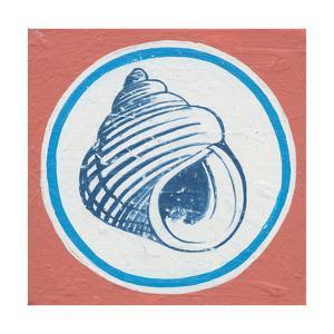 Summer Shells III by Kathrine Lovell