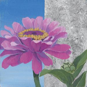 Zinnia Pink and Silver by Kathrine Lovell