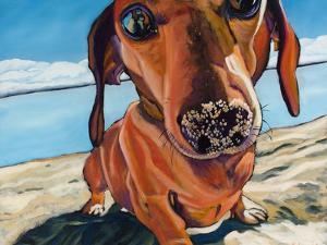 Sand Dog by Kathryn Wronski