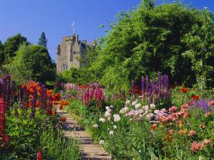 Herbaceous Borders in the Gardens, Crathes Castle, Grampian, Scotland, UK, Europe by Kathy Collins