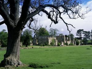 Jervaux Abbey Near Masham, North Yorkshire, Yorkshire, England, United Kingdom by Kathy Collins