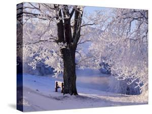 Winter Scene Beside the River Tay, Aberfeldy, Perthshire, Scotaland, UK by Kathy Collins