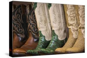 Cowboy Boots II by Kathy Mahan