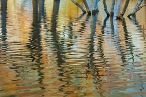 Lake Powell Reflections I by Kathy Mahan
