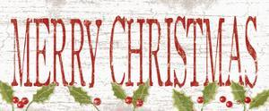 Merry Christmas by Kathy Middlebrook