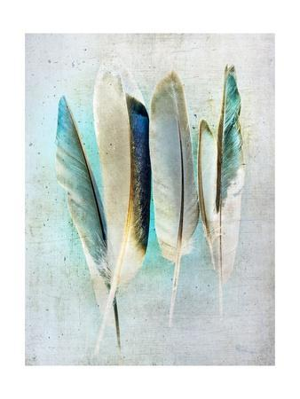 Feathers Turquoise