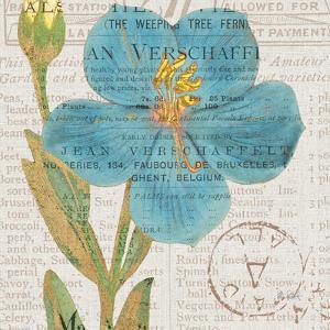 Bookshelf Botanical VI by Katie Pertiet