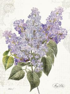 May Lilac on White by Katie Pertiet
