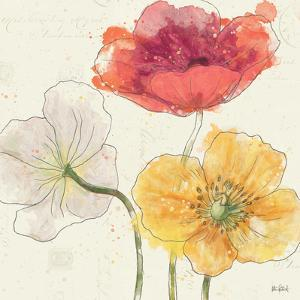 Painted Poppies V by Katie Pertiet
