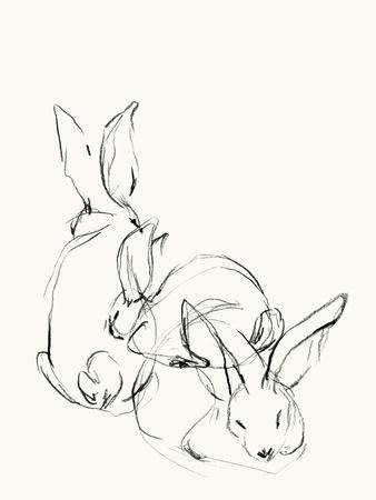 Bunny Group 2