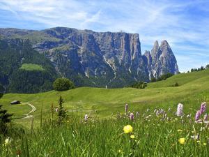 Seiser Alm, Trentino, South Tyrol, Italy by Katja Kreder