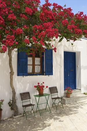 Tavern in Lefkes, Paros Island, Cyclades, Greece