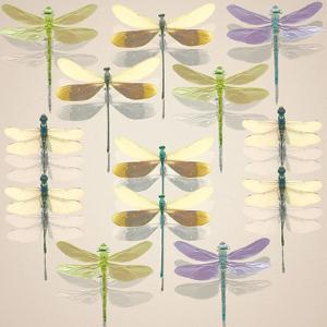Floating Dragonflies II by Katja Marzahn