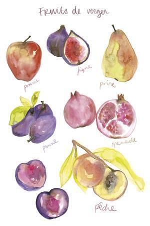 Fruits de Verger