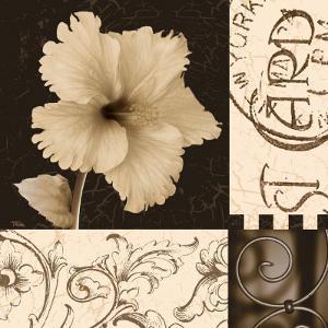 Hibiscus Blossom I by Katrina Craven