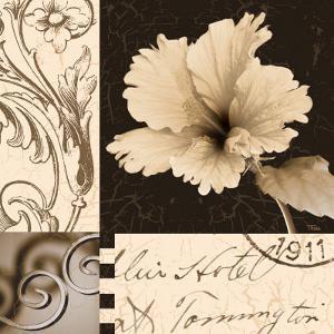 Hibiscus Blossom II by Katrina Craven