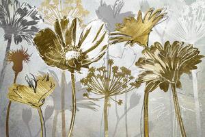 Summer's Field by Katrina Craven