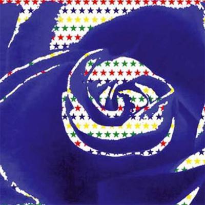 Katsu Flower III-Katsushiro Isobe-Art Print