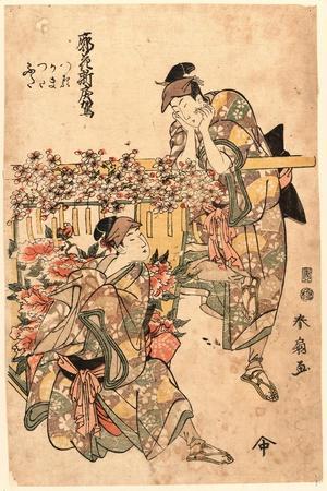 Kuruwa No Hana Shin Modorikago
