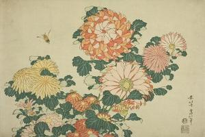 Chrysanthemums and Bee, from an Untitled Series of Large Flowers, C.1833-34 by Katsushika Hokusai