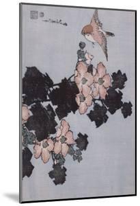 Hibiscus et moineau by Katsushika Hokusai