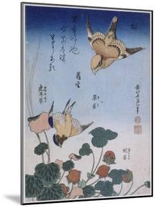 Hirondelle et pie sur fraisier et bégonia by Katsushika Hokusai
