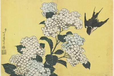 Hydrangea and Swallow, C. 1832 by Katsushika Hokusai
