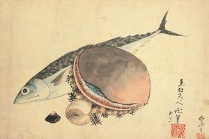 Mackerel and sea shells. 1840 by Katsushika Hokusai