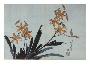 Orchidées orange by Katsushika Hokusai