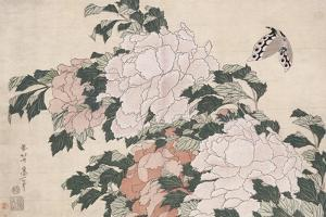 Pink and Red Peonies Blown to the Left in a Breeze and a Butterfly by Katsushika Hokusai
