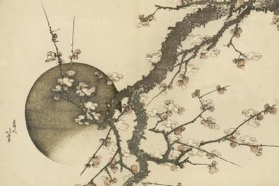 Plum Blossom and the Moon from the Book Mount Fuji in Spring (Haru No Fuji), C.1803