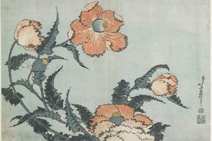 Poppies, C. 1832 by Katsushika Hokusai