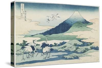 Umezawa Village in Sagami Province, 1831-1834