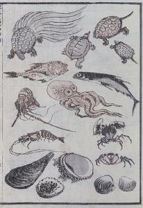 Undersea Creatures, from a Manga (Colour Woodblock Print) by Katsushika Hokusai